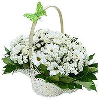 Lillekorv klassikaline, kõrgus 25cm