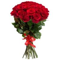 Punane roos 80cm-90cm