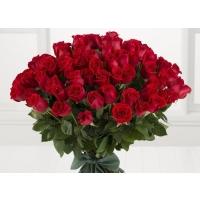 Punane roos 60cm-70cm