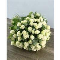 Valge roos 40cm-50cm