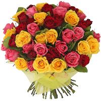 Värviline roosikimp 51tk. + kaunistus