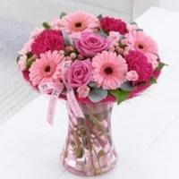 Karkassikimp roosades toonides (suur 35cm)