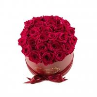 Kimp värvilistest roosidest 40cm-50cm 25tk.